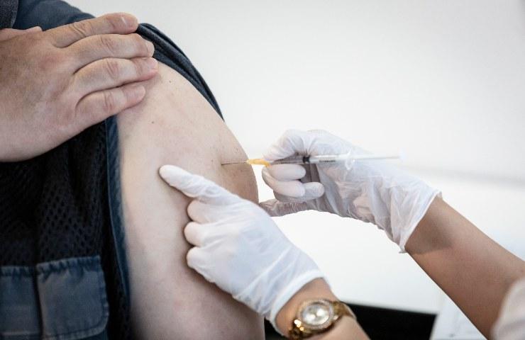 vaccino studio